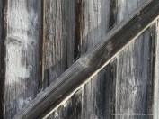 Struktur Holz (c) Carola Peters