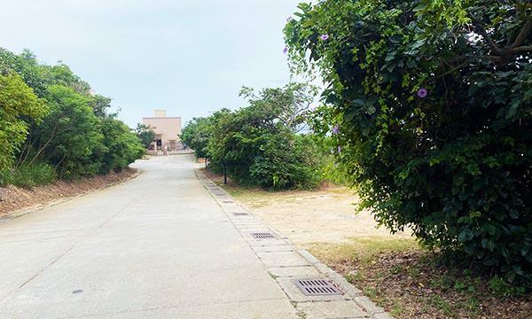 塔山電廠輸油棧橋碼頭交通