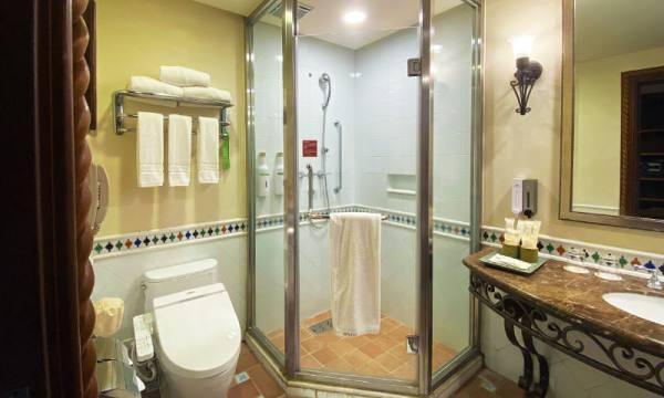 理想大地的浴室