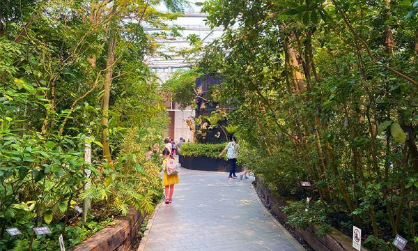 新生公園 典藏植物園
