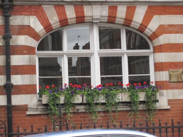 mayfair window