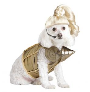 Pup-a-razzi-Pop-Queen-Dog-Costume-