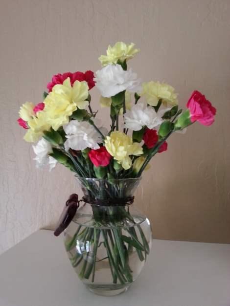 bouquet happy nice