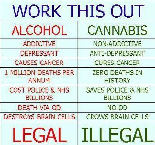 alco-vs-cannabis
