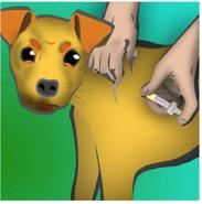 dogshot1
