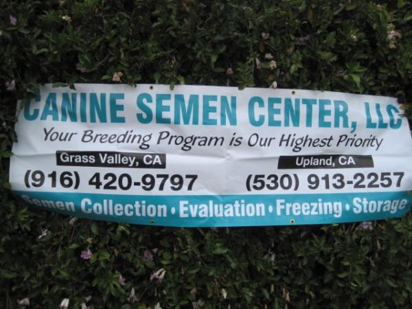 semen center