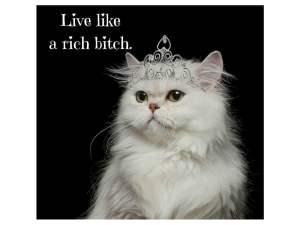 live-rich