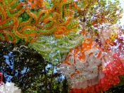 I like the way the waves of the dresses mix with the reflection of the leaves to create an abstract.