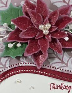 Poinsettia Petal Curvy Celebrations