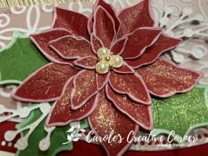 Pretty Poinsettia