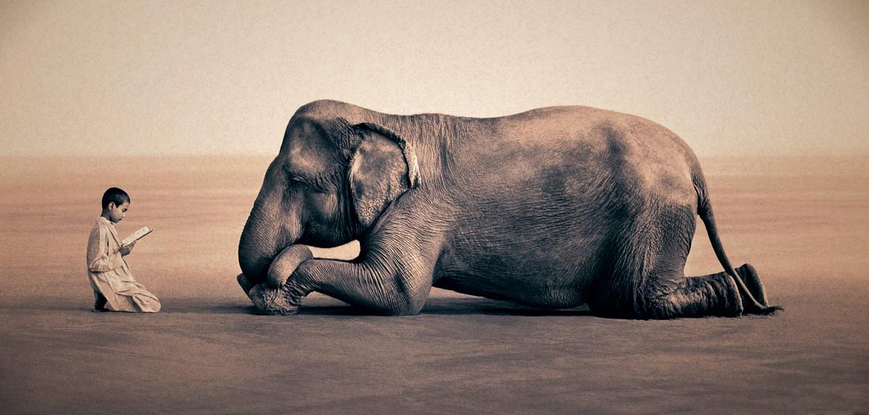 Elephant and child
