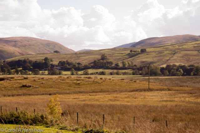 Tebay Landscape 2 4 October 2014 (1 of 1)