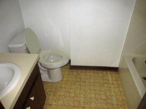 527 W Grantham Bathroom