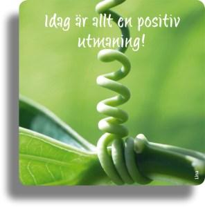 morgonpeppingkort_bra_dag_utmaning_1724