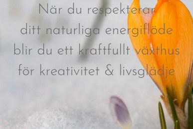 När du respekterar ditt naturliga energiflöde blir du ett kraftfullt växthus för kreativitet & livsglädje