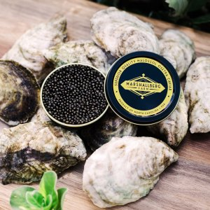 carolina-gold-oysters-marshallberg-farm-caviar