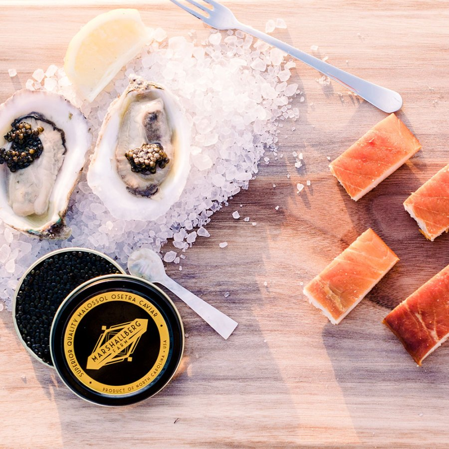 Order fresh Carolina Gold Oysters, Caviar and Smoked sturgeon from Carolina Gold Oyster Company!