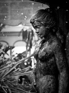 Fountain. Conservatory of Flowers, San Francisco.