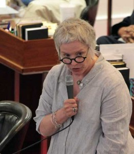 Rep. Susan Fisher, D-Buncombe, speaks during the debate over . Kirk Ross/Carolina Public Press
