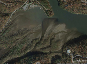 A recent Google Earth satellite image shows the sediment building in Lake Adger, a key Polk County water resource. Cost estimates for dredging it run from roughly $2.5 million to $5 million.