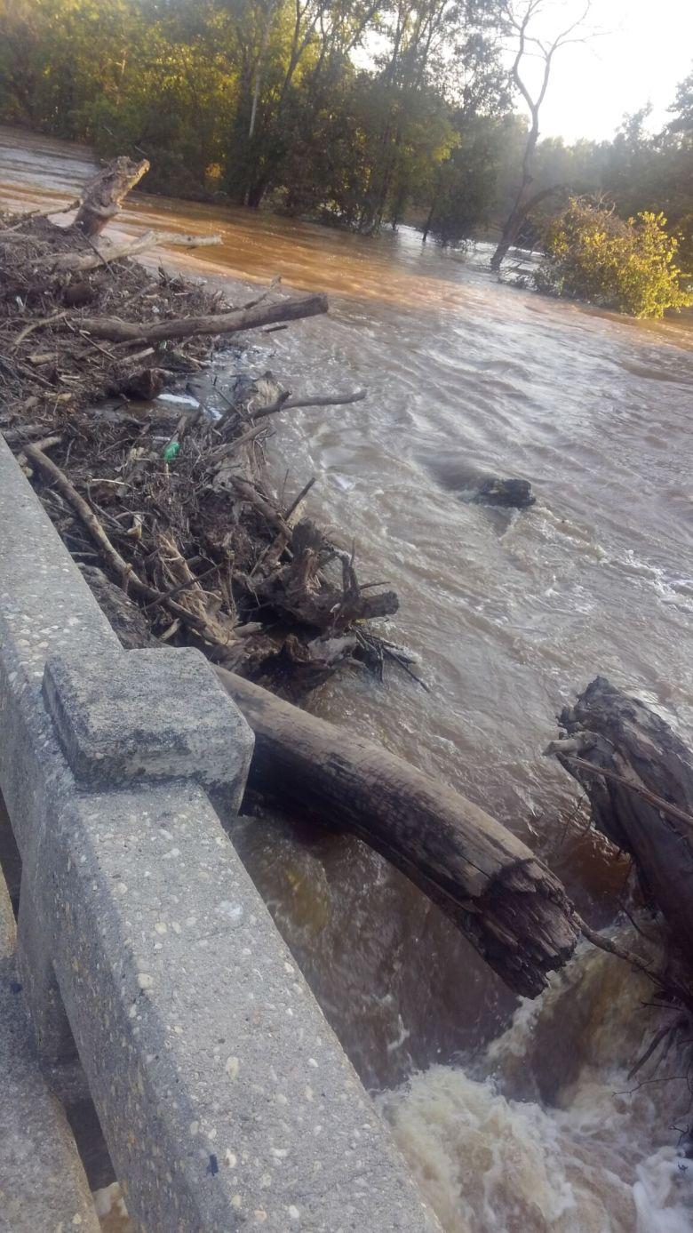 Flood debris. Chatham. September 2018