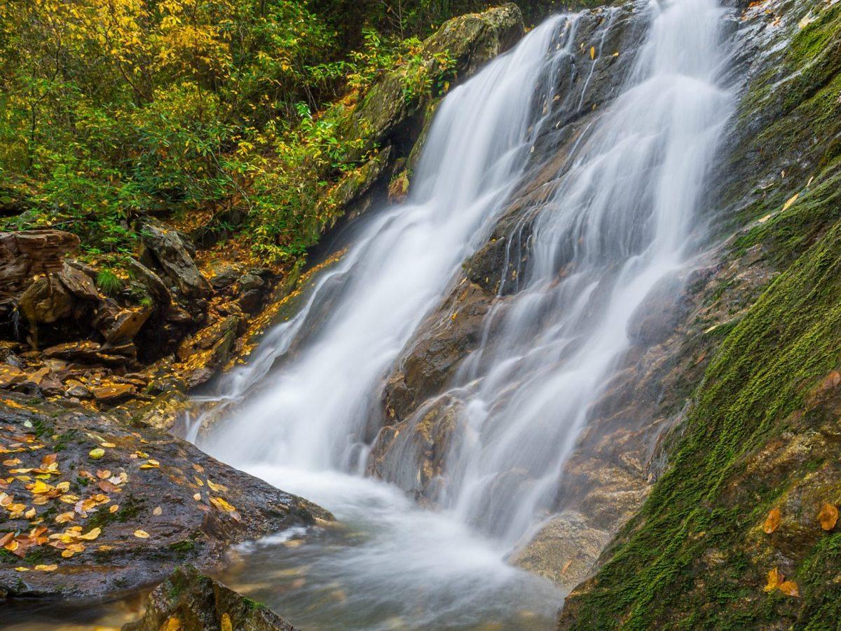 Lower Sam Branch Falls in Pisgah National Forest