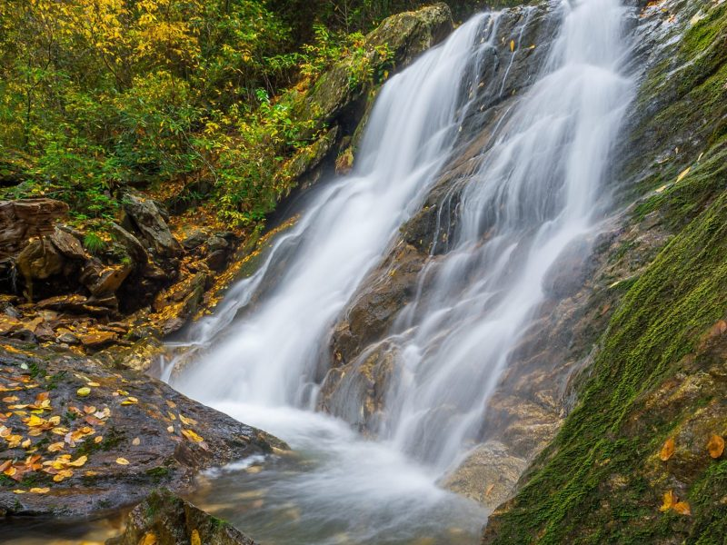 Lower Sam Branch Falls in Pisgah National Forest