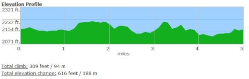 Apple Festival 8k Elevation Profile