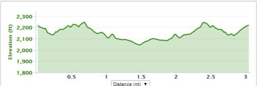 Arc of Buncombe 5kElevation (click to see my Garmin data)