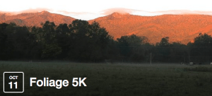 Foliage 5k