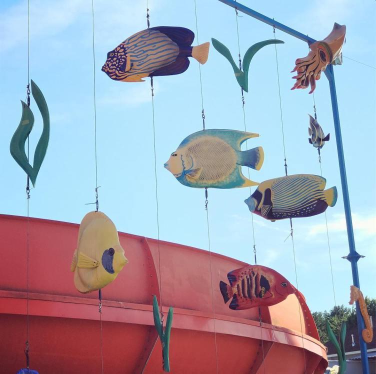 Here_fishy_fishy_fishy