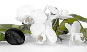 Relax stone orchid