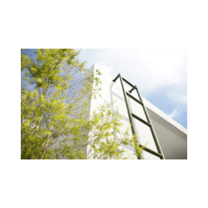 Fear of heights ladder