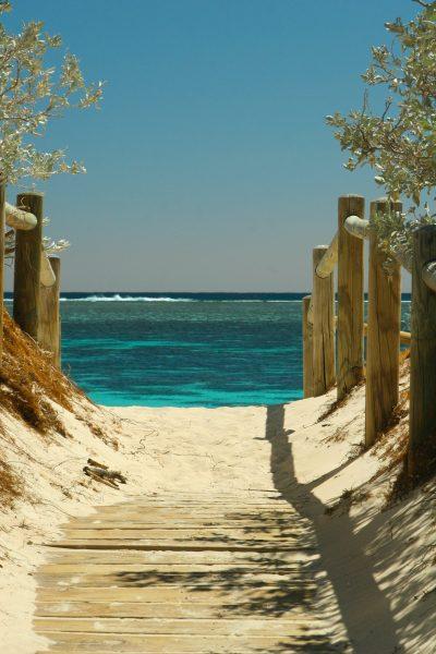 Beach path photo