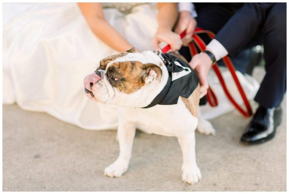 Whitemarsh Valley Country Club Wedding | Caroline Morris Photography