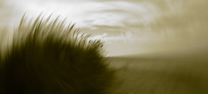 dune en mouvement psd