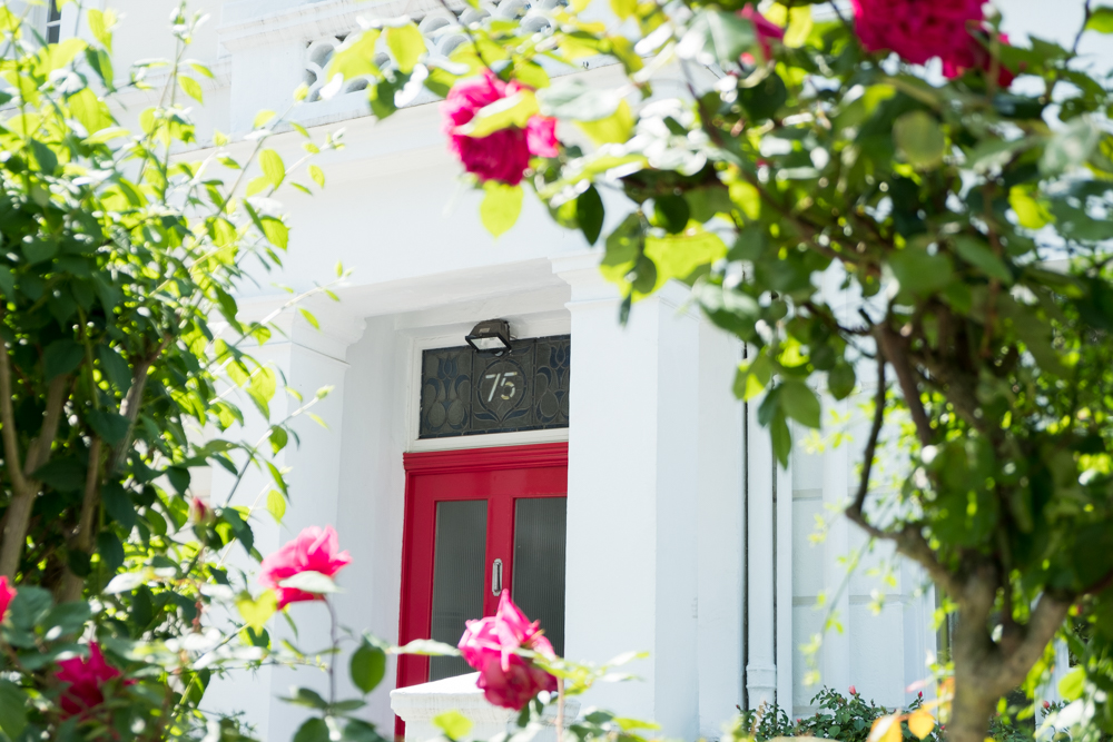 Red front door with red rose blossom around it