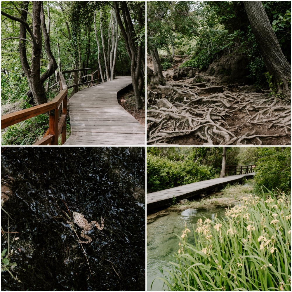 Wooden walkway through Krka National Park