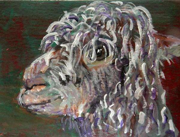 curly alpaca ACEO, alpaca painting, alpaca art, miniature alpaca art, llama gift