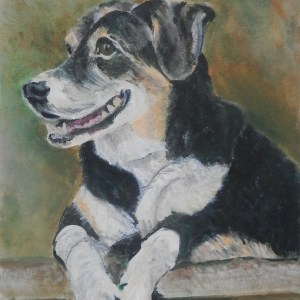 Entlebucher Mountain Dog, mountain dog painting, pet portrait