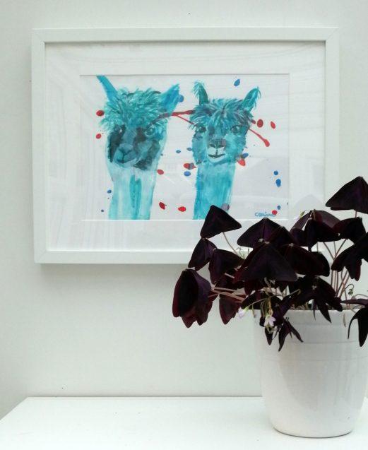 Turquoise alpacas, alpaca painting, white framed alpacas, black framed alpacas, llama gift, teal alpaca painting