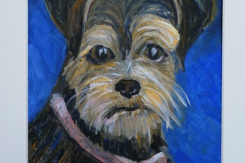 yorkshire terrier pet portrait, acrylic pet painting