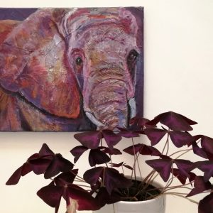 elephant canvas, elephant painting, elephant art