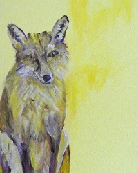 Fox with yellow background, British wildlife, woodland fox art