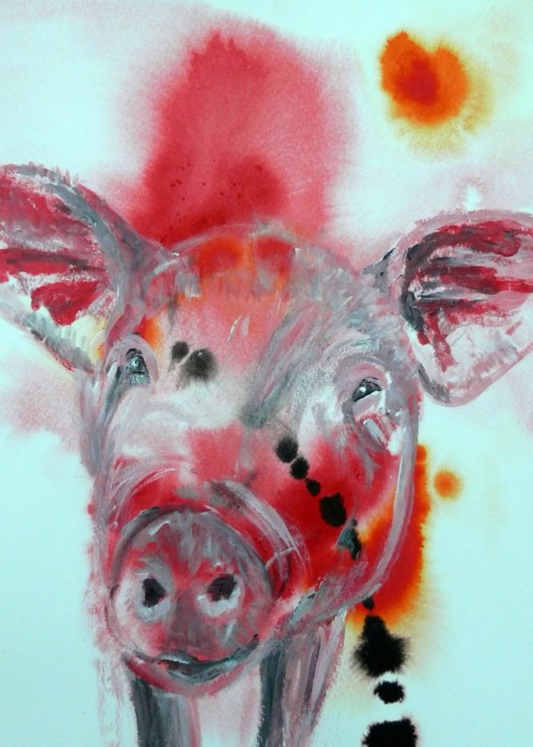 Red pig card, farm animal, birthday card