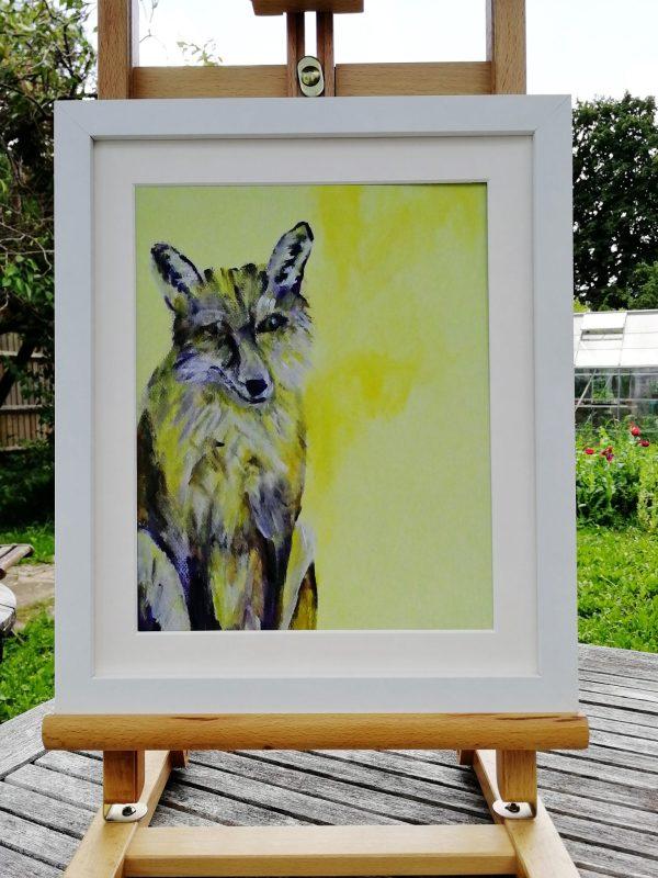 Yellow fox illustration