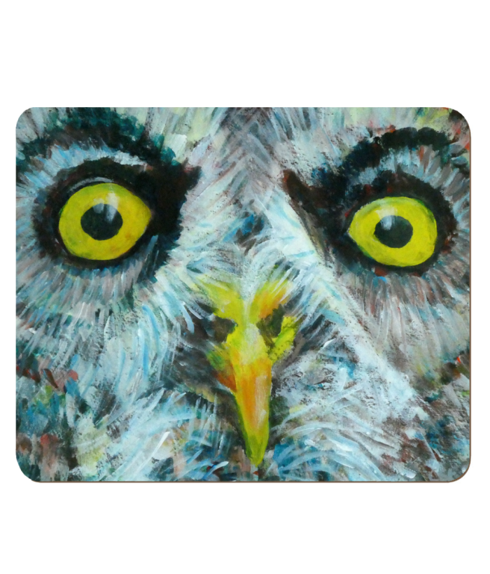 Great Grey Owl placemat, owl gift, owl table mat, yellow eyes, sharp beak, wild bird, bird of prey giftd