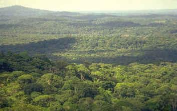Amazonie en danger (1/6)