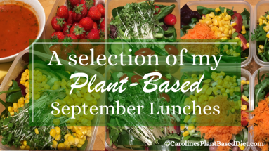 September plant based lunches 2018