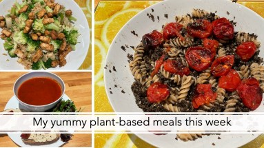 My yummy plant-based meals this week